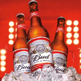 Пиво BUD 0,5л